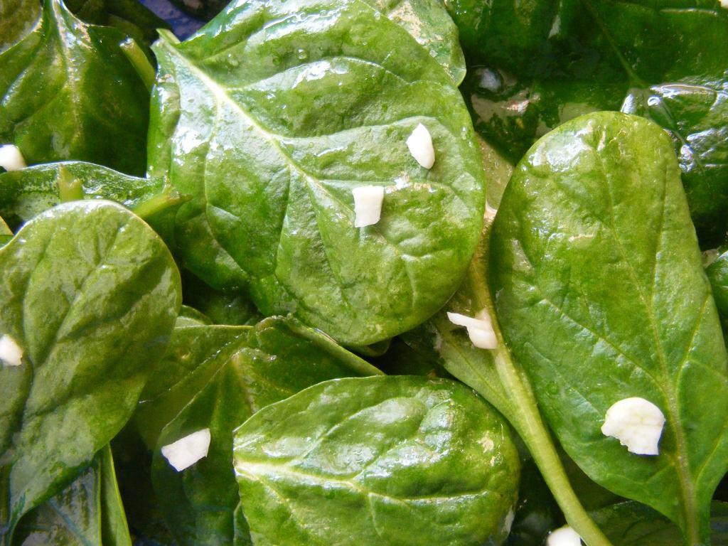 B12-Versorgung nach neuer Methode durch nur 2 Kilo Spinat täglich möglich